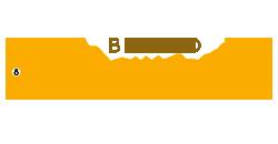 Bingo Enchanted logo